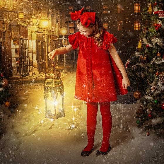 """""""Noel"""" Velvet Dress"""