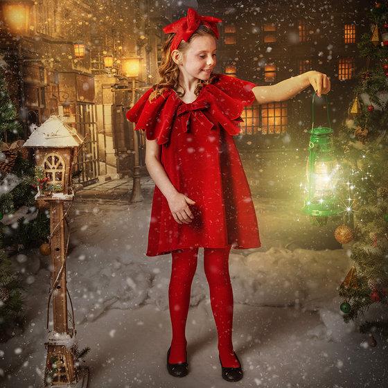 """""""Rudolf"""" Velvet Dress"""