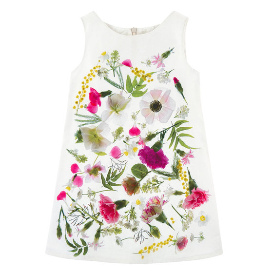 Daisy Floral Print Dress