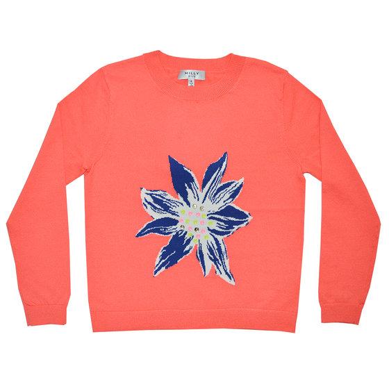 Embellished intarsia pullover