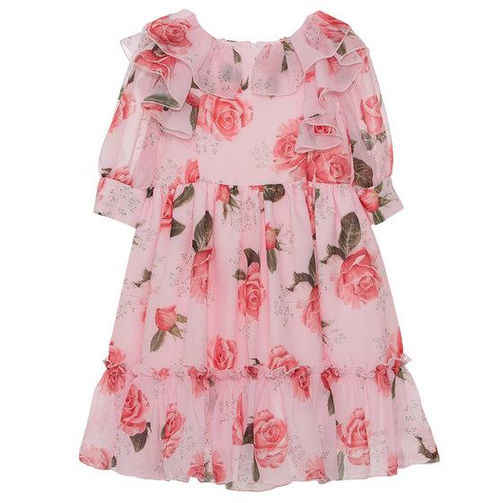 Rose Garden Printed Dress