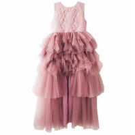 Dusty Pink Daring Tiered Tulle Dress
