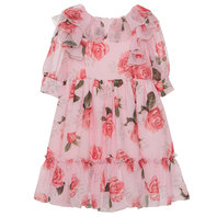 Rose Garden Printed Dress