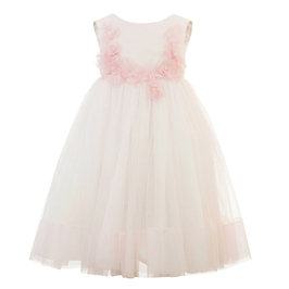 Pale Pink and Floral Tulle Dress