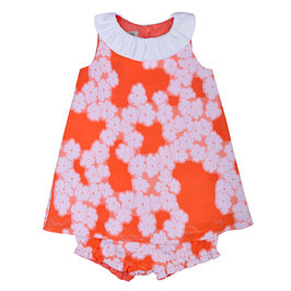 Baby Girl Floral Print Dress with Bloomer