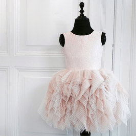 Blush Fanciful Lace and Tulle Dress