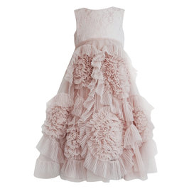 Blush Frisky Frolic Long Pleated Tulle Dress