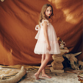 Blush Fiona Dress